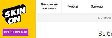 Сайт skinon.ru