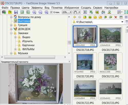 Окно программы FastStone Image Viewer