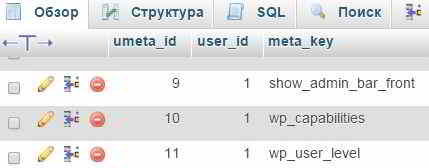 Вкладка Обзор таблицы local_usermeta